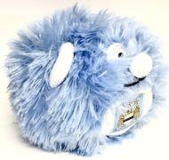 Manchester City Fir Ball Football Gifts